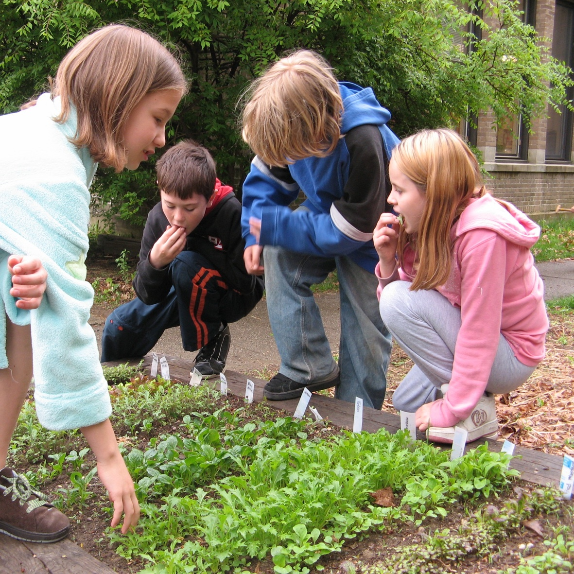 The benefits of a school garden are many does your school for Gardening with children