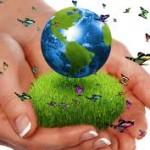 World Wide WEsponsibility